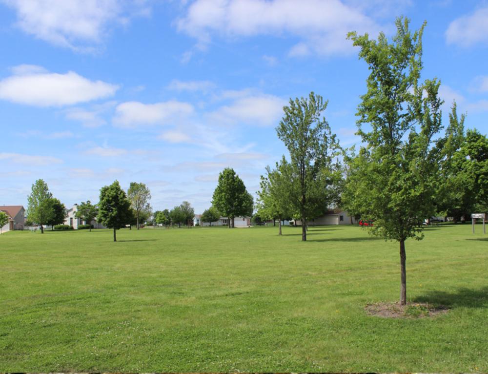 Opzione 7 – Alta via dei parchi
